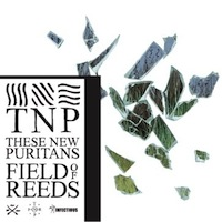 These New Puritans – Field Of Reeds
